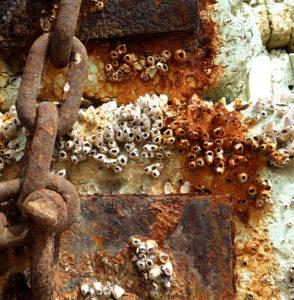 Rusty material IX