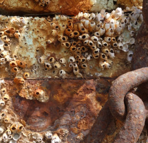 Rusty material VI